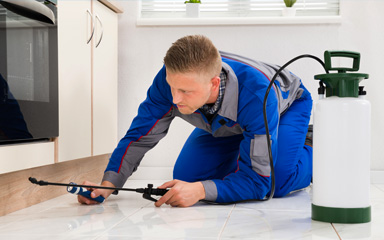 Assistance for Pest Control Companies